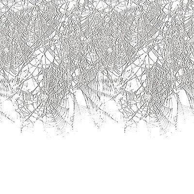 Wandborte Spinnweben