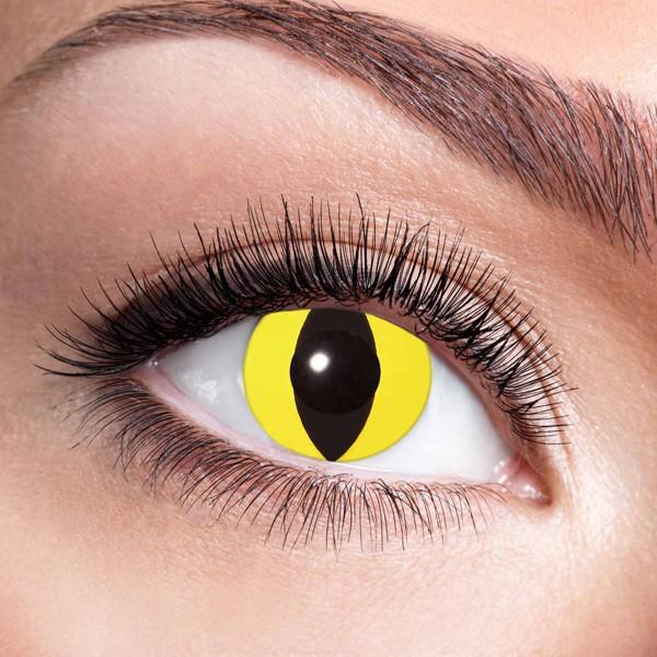 Farbige Kontaktlinsen ohne Stärke Yellow Cat