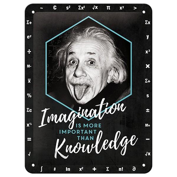 Blechschild Einstein Imagination