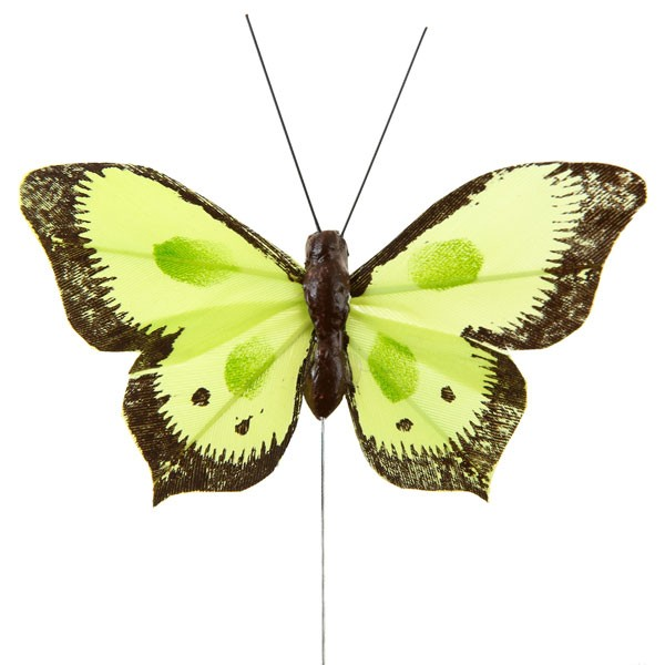 Deko-Schmetterlinge grün