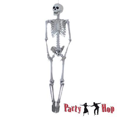 Großes künstliches Skelett