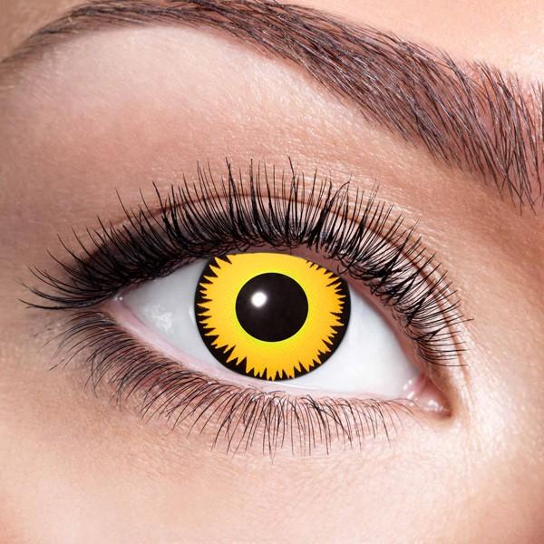 Farbige Kontaktlinsen ohne Stärke Löwe