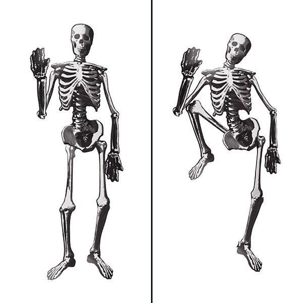 Papp Skelett 135cm